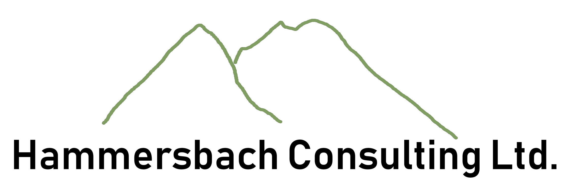 Hammersbach Consulting